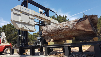 Texas Wood Slabs Texas Pecan